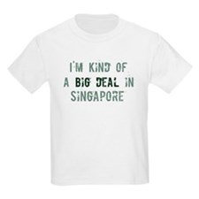 Big deal in Singapore T-Shirt