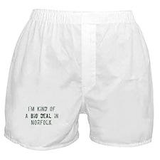 Big deal in Norfolk Boxer Shorts