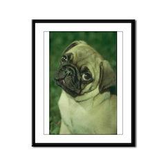 Pug Dog Framed Panel Print