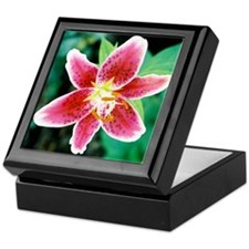 Lily Art / Photography Keepsake Box
