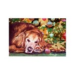 Golden Retriever Christmas Rectangle Magnet
