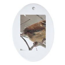 Carolina Wren Oval Ornament