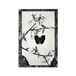 The Butterfly Rectangle Magnet (10 pack)