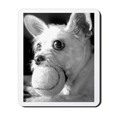 What Ball? Art / Photography Mousepad