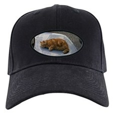 Fat Cat Baseball Hat