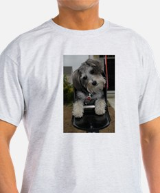 Funny Schnoodle T-Shirt