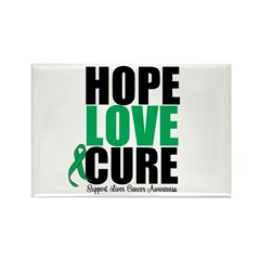 HopeLoveCure LiverCancer Rectangle Magnet (100 pac