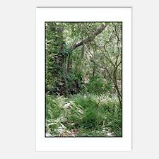 Primordial Landscape Postcards (Package of 8)