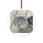 Light Tabby Cat Ornament (Round)