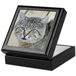 Light Tabby Cat Keepsake Box