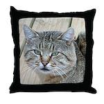 Light Tabby Cat Throw Pillow