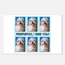 Peekapoo ICU Postcards (Package of 8)