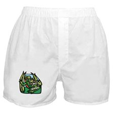 Red Bellied Frog Boxer Shorts