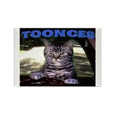 TOONCES Rectangle Magnet (10 pack)