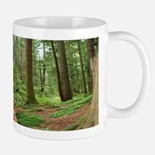 Glimpse into the Redwood Forest Mug
