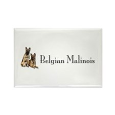Belgian Malinois Pair Rectangle Magnet
