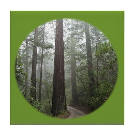 Redwood Forest Fog Tile Coaster