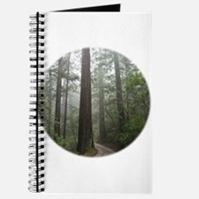 Redwood Forest Fog Journal