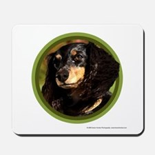 Long-Haired Dachshund Art Mousepad