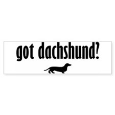 Got Dach? (1) Bumper Bumper Sticker