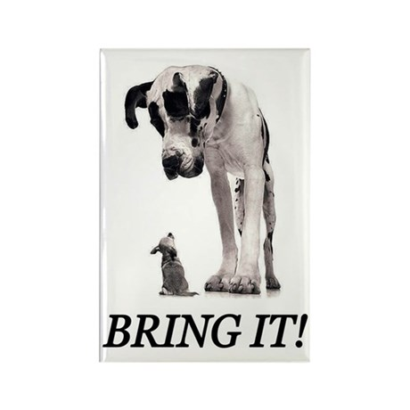 Bring It! Rectangle Magnet (100 pack)