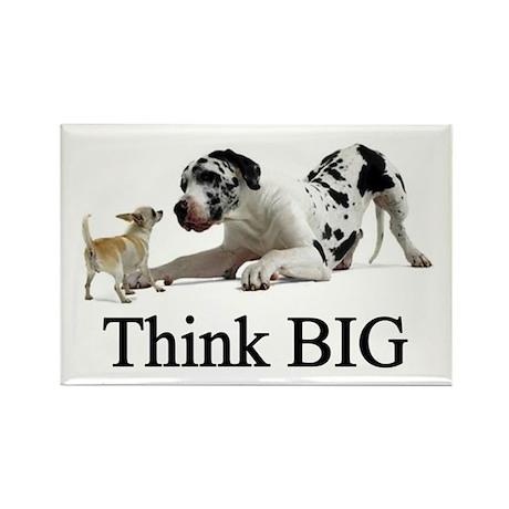 Think Big Rectangle Magnet (10 pack)