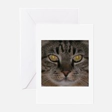 """""""Mr Boots"""" Tabby Cat Greeting Cards (Pk of 10)"""