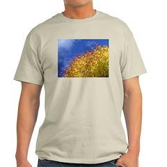 Blue Red Yellow Ash Grey T-Shirt
