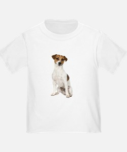 Jack Russell Terrier T