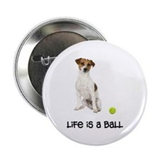 "Jack Russell Terrier Life 2.25"" Button"