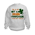 Kid Not Leprechaun Kids Sweatshirt