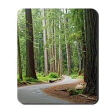 A roadway through the redwoods Mousepad