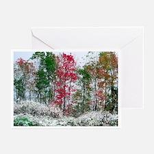 Winter landscape cards (Pk of 10)