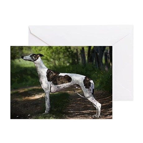 Greyhound Art Greeting Cards (Pk of 20)