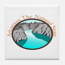 Arkansas Natural State Ash Grey T-Shirt Tile Coast