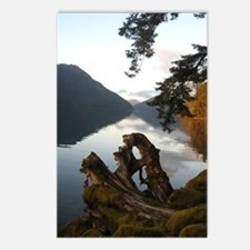 Diane Young Photography Postcards (Package of 8)
