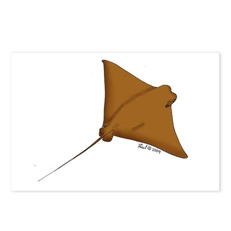 Cownose Ray Postcards (Package of 8)