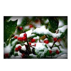 Tennessee Snow Postcards (Package of 8)