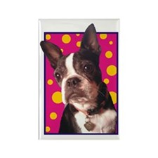 Bella Shea Rectangle Magnet (10 pack)