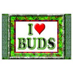 I Love Buds - BIG Poster - 35