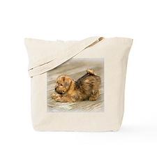 Playful Norfolk Terrier Pup Tote Bag