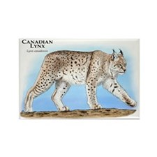 Canadian Lynx Rectangle Magnet