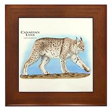 Canadian Lynx Framed Tile
