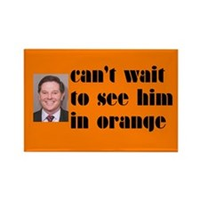 DeLay prison orange Rectangle Magnet
