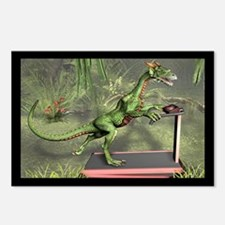 Dragon Exercise Postcards (Package of 8)