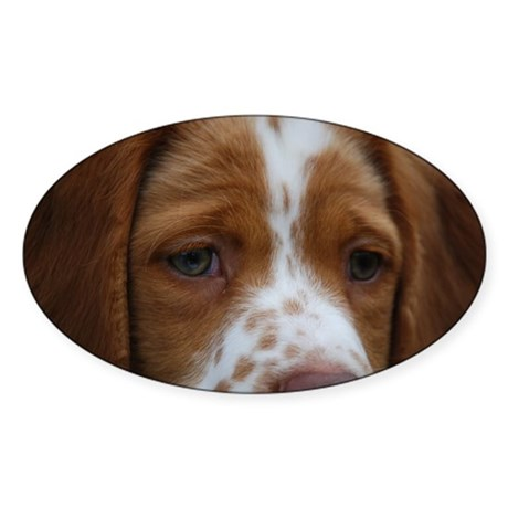 Brittany Puppy Oval Sticker