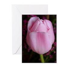 Pink Tullip Greeting Cards (Pk of 10)