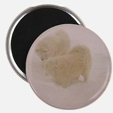"""Samoyed 2.25"""" Magnet (10 pack)"""