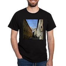 Funny Volterra T-Shirt