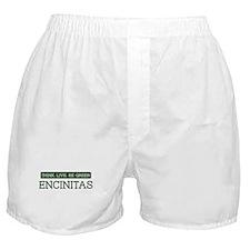 Green ENCINITAS Boxer Shorts